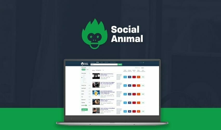 Social Animal Lifetime Deal